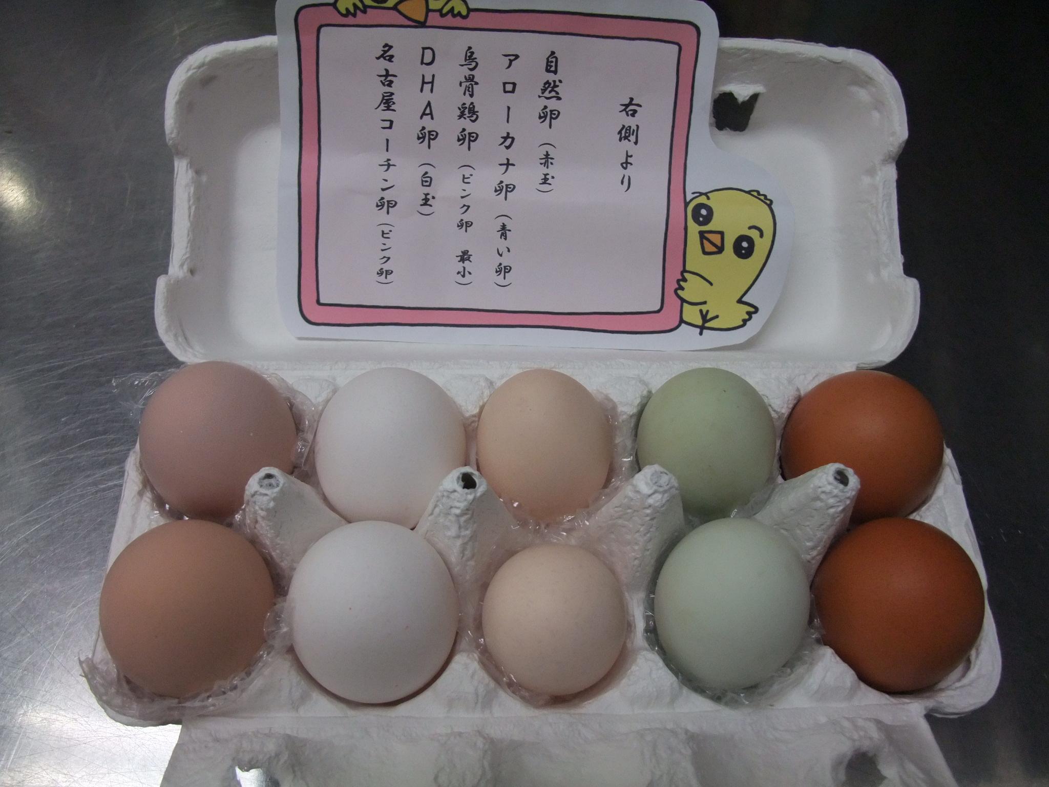 いろいろ鶏卵の食べ比べ