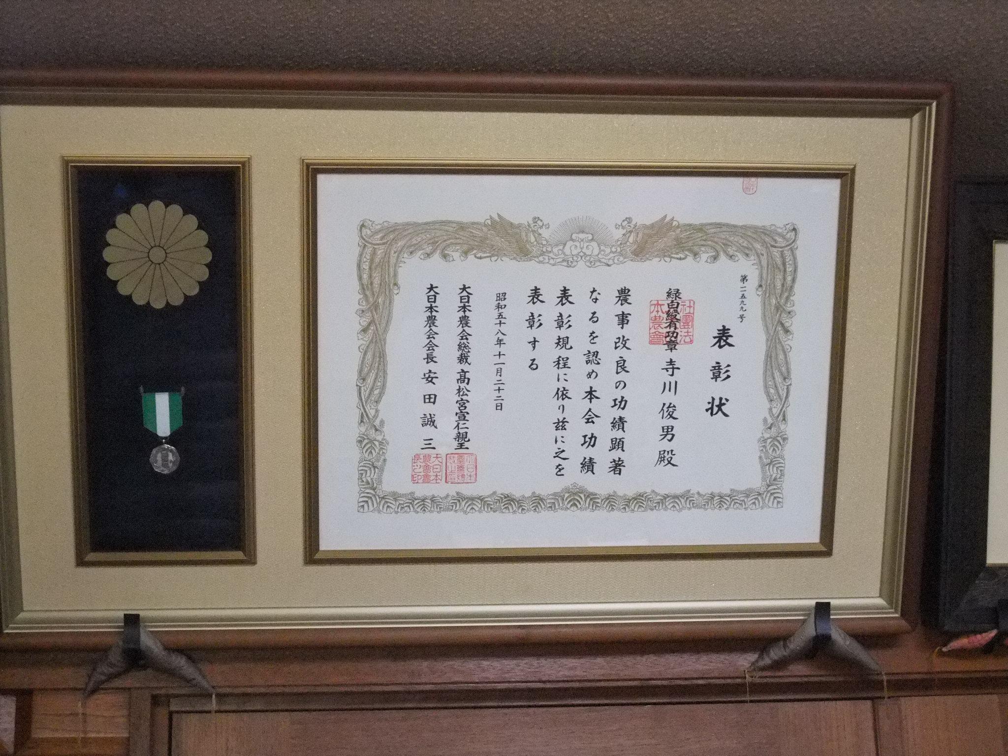 寺川大福園さんのお茶摘みを見に行きました!
